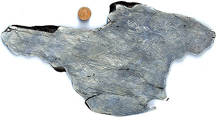 Nickel Iron Meteorite