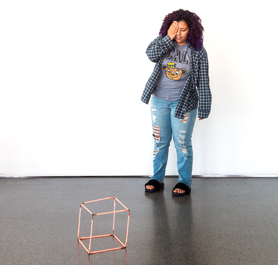 Science activity to construct a cube that can be perceived in two ways
