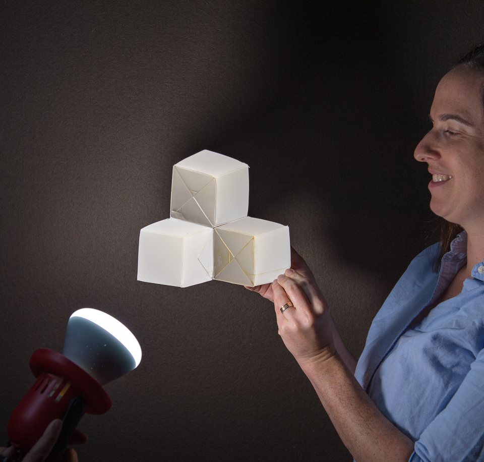 Science activity that demonstrates an ambiguous figure optical illusion
