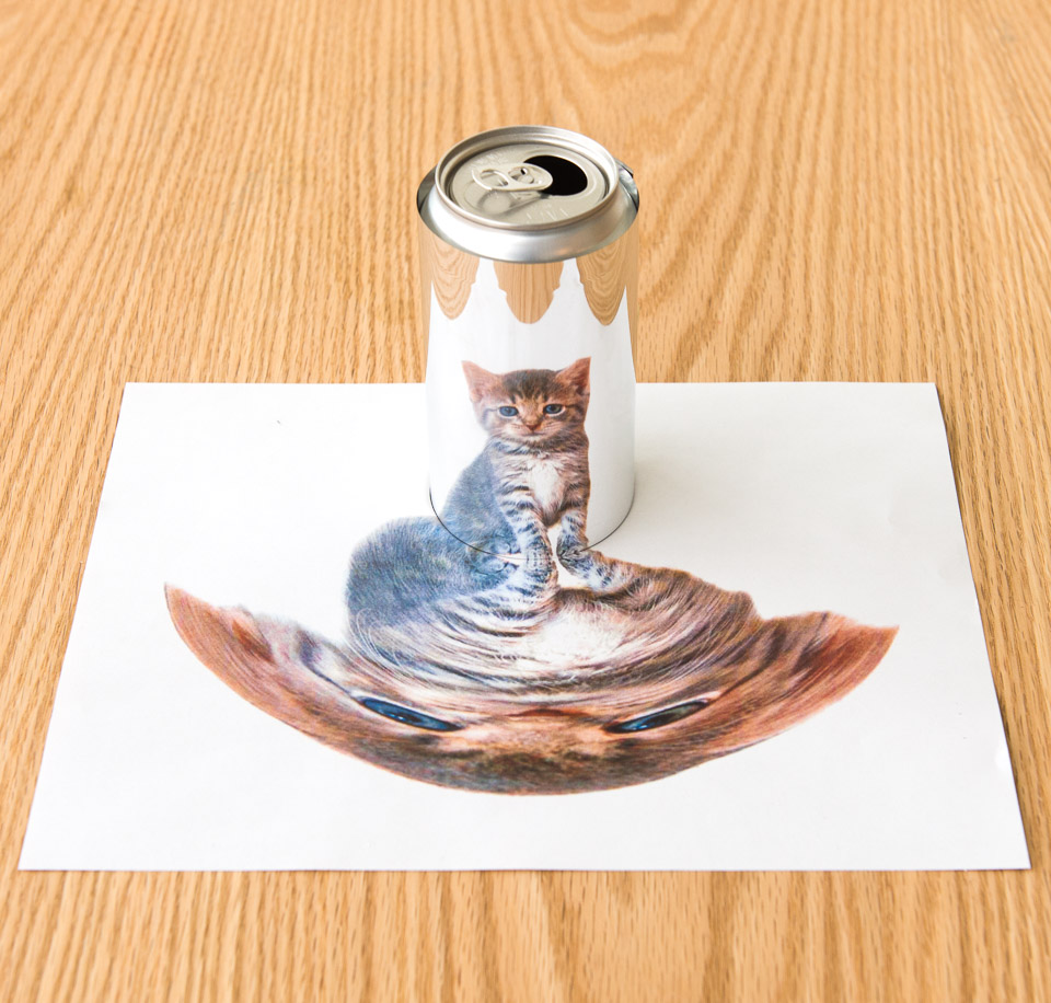 picture relating to Anamorphic Illusions Printable identify Soda Can Replicate: Physics Effect Science Recreation