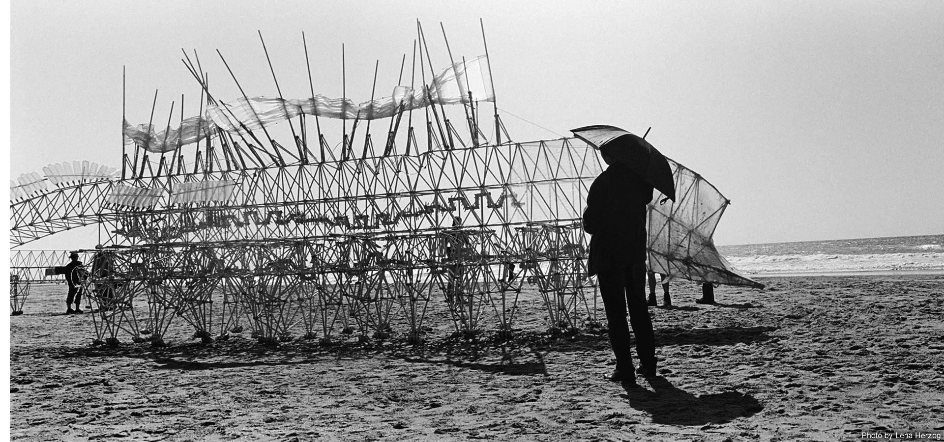 Strandbeest on the beach. Photography by Lena Herzog