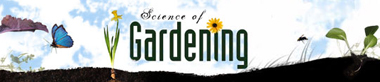 Accidental Scientist: Science of Gardening