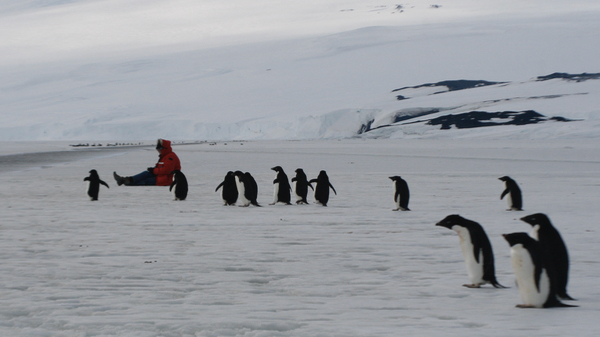 John Weller with penguins (Photo by Mary Miller/Exploratorium)