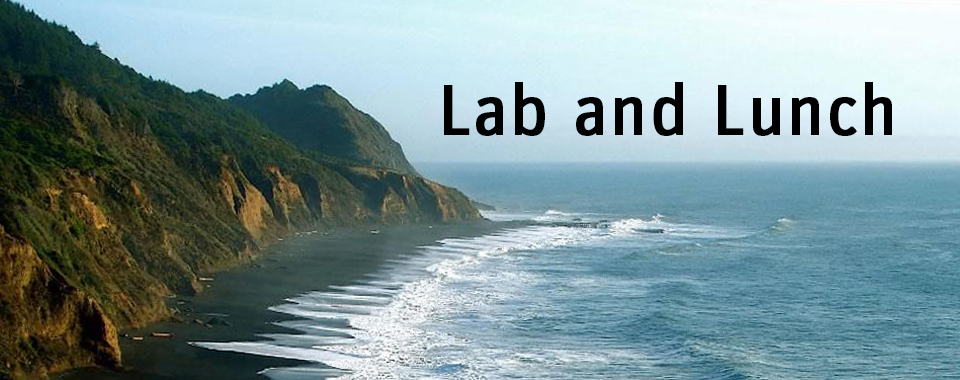 Lab and Lunch