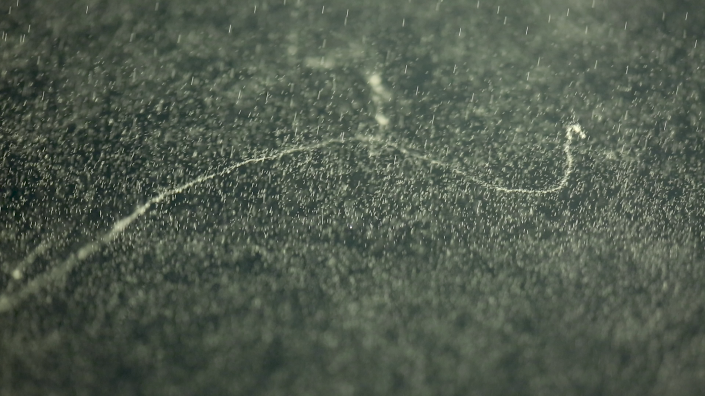 Exhibits: Cloud Chamber