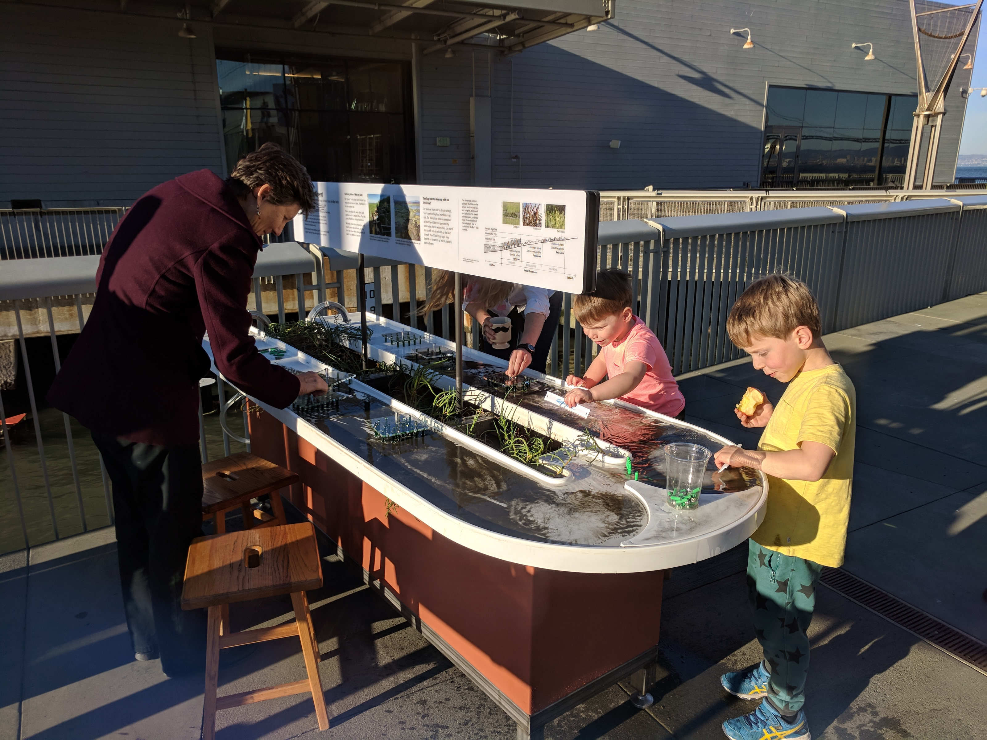 A woman and two boys interact with the Sediment Trapping exhibit, a flume flowing with Bay water and sediment.