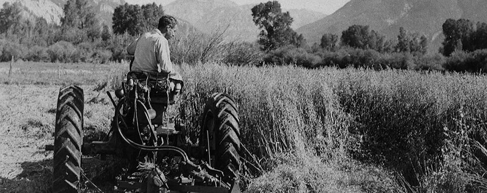 Photograph of a man driving a tractor