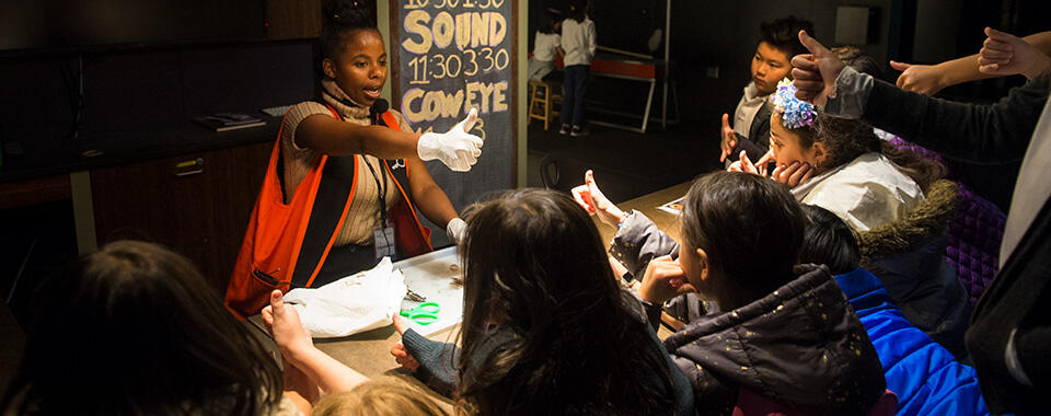 Field Trip Explainer dissecting a cow eye for students