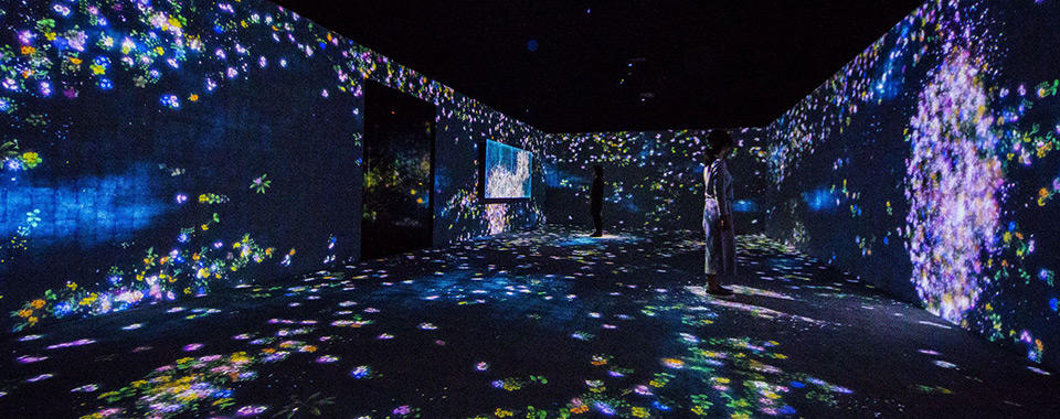 Photo courtesy of PACE: teamLab, Flowers and People, Cannot be Controlled but Live Together—A Whole Year per Hour, 2015. Interactive digital installation.