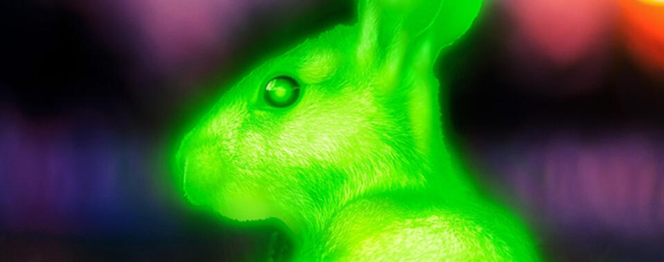 Illustration of a green, glowing rabbit