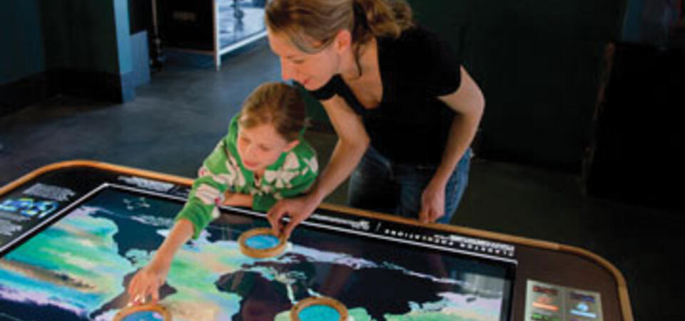 Plankton Populations. Image by Amy Snyder © Exploratorium, All rights reserved