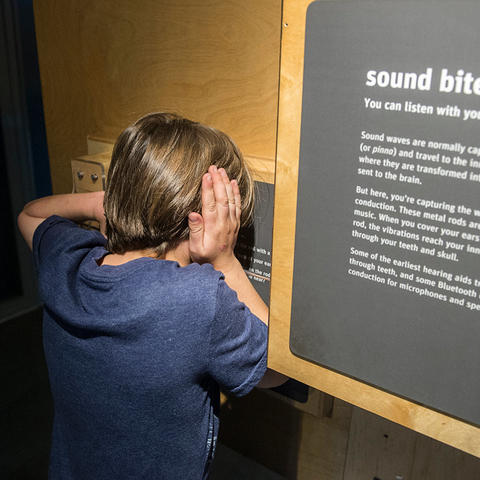 Sound Bite exhibit