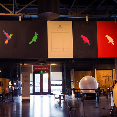 The Bird in a Cage exhibit in the Exploratorium's Central Gallery