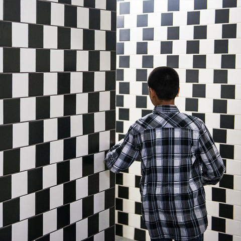 Cafe Wall Illusion exhibit
