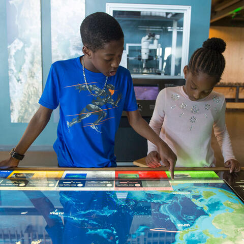 Mapping Migrations exhibit