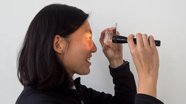 Science activity that investigates the pupil