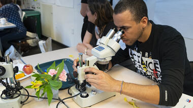 Teachers looking through microscopes