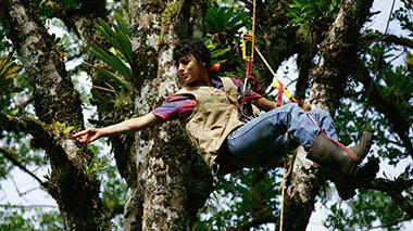 Nalini Nadkarni examines a plant while climbing in the forest canopy in Costa Rica.