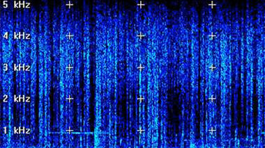 Spectrogram of hydrophone recording