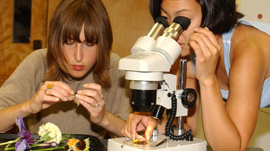 Member Excursion: Flower Dissection