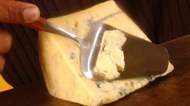 Moldy Science: Cheese