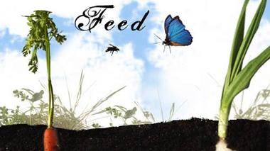 Science of Gardening: Feed