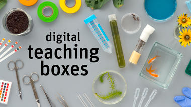 Digital Teaching Boxes