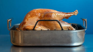 Timing the Perfect Turkey