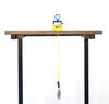 Science activity that demonstrates components of force and motion