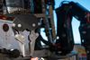 Hercules has two arms that can be manipulated by the ROV pilot from the control room on board the Nautilus. A special pincher attachment allows the ROV to take samples of coral. (Photo: Gayle Laird/Exploratorium)